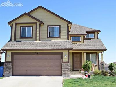 Mesa Ridge Single Family Home For Sale: 7573 Duck Hawk Place