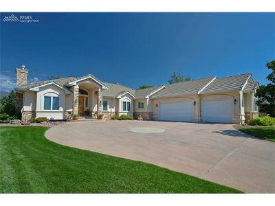 Colorado Springs Single Family Home For Sale: 3745 Camel Grove
