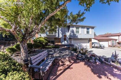 Colorado Springs Single Family Home For Sale: 6560 Alberta Drive