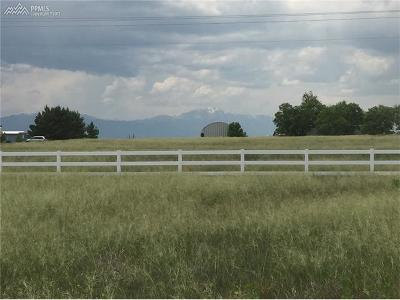 Peyton Residential Lots & Land For Sale: 14825 Reiner Court