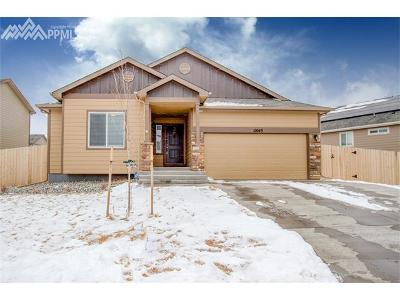Colorado Springs Single Family Home For Sale: 10049 Thunderbolt Trail