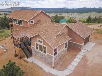 Florissant Single Family Home For Sale: 549 S Mountain Estates Road