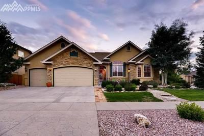 Colorado Springs Single Family Home For Sale: 5686 Annie Oakley Way