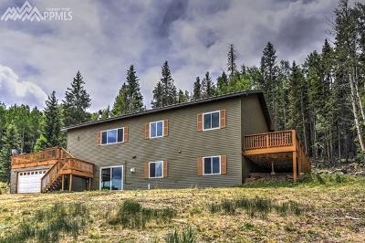 Cripple Creek Single Family Home For Sale: 66 Bernhard Terrace