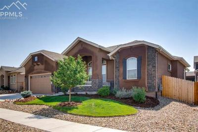 Colorado Springs Single Family Home For Sale: 6761 Mustang Rim Drive