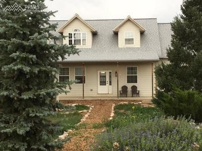 Colorado Springs Single Family Home For Sale: 6085 Luther Road