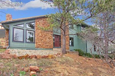 Colorado Springs Single Family Home For Sale: 1440 Oak Hills Drive