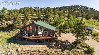 Cripple Creek Single Family Home For Sale: 121 Stratton Circle