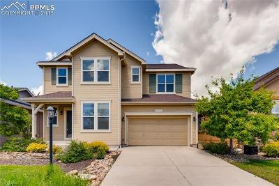 Colorado Springs Single Family Home For Sale: 5042 Petrified Forest Trail
