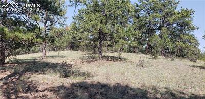 Residential Lots & Land For Sale: 196 Apache Circle