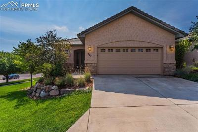 Colorado Springs Condo/Townhouse For Sale: 587 Minuet Point