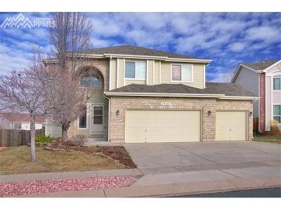 Colorado Springs Single Family Home For Sale: 6719 Cabin Creek Drive