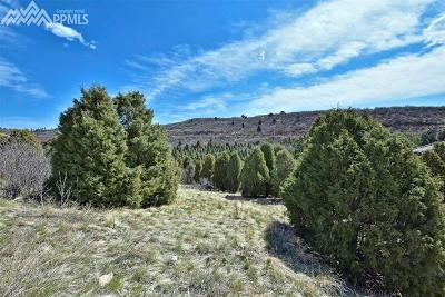 Cedar Heights Residential Lots & Land For Sale: 3445 Black Canyon Road