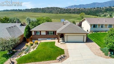 Colorado Springs Single Family Home For Sale: 1565 Bear Cloud Drive