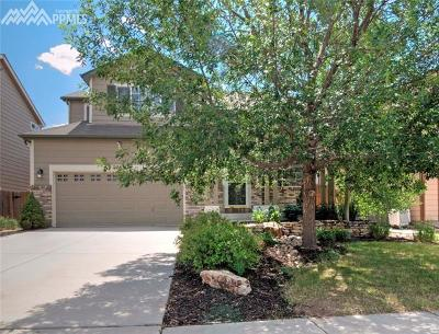 Single Family Home For Sale: 2385 Sage Grouse Lane