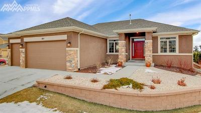 Colorado Springs Single Family Home For Sale: 885 Black Arrow Drive
