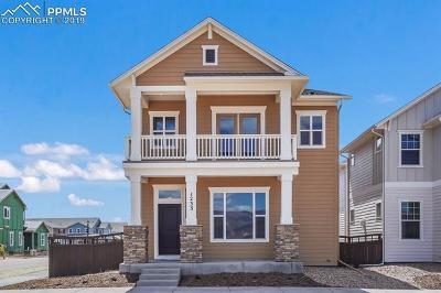 Admirable New Homes For Sale In Colorado Springs Co Download Free Architecture Designs Ferenbritishbridgeorg