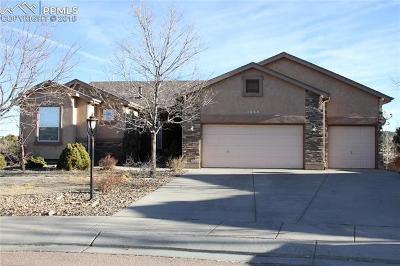 Colorado Springs Single Family Home For Sale: 3654 Oak Meadow Drive
