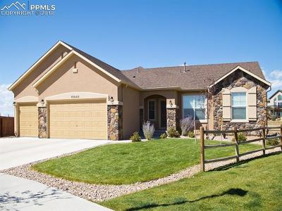 Peyton Single Family Home For Sale: 10649 Mt Emerald Drive