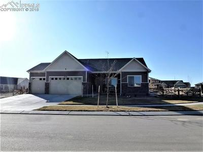 Colorado Springs Single Family Home For Sale: 8834 Tranquil Knoll Lane