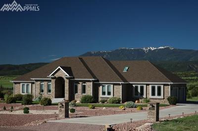 Single Family Home For Sale: 5865 Garrett Road
