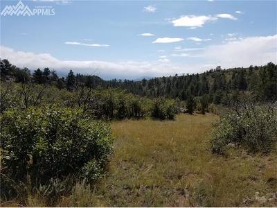 Florissant Residential Lots & Land For Sale: 453 Apache Place