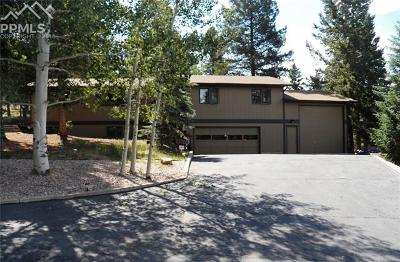 Woodland Park Single Family Home For Sale: 1111 Pine Ridge Road