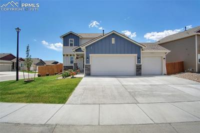 Single Family Home For Sale: 6613 Galpin Drive