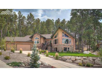 Single Family Home For Sale: 20219 High Pines Drive