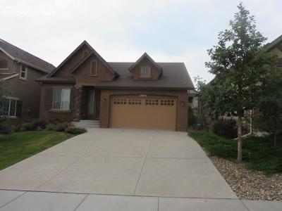 Colorado Springs Single Family Home For Sale: 4842 Turquoise Lake Court