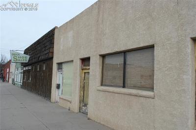 Commercial For Sale: 1318 E Evans Avenue