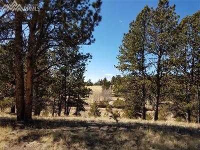 Residential Lots & Land For Sale: 1304 Kiowa Road