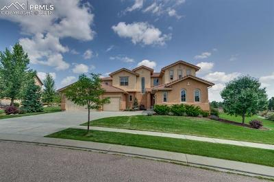 Colorado Springs Single Family Home For Sale: 2114 Diamond Creek Drive