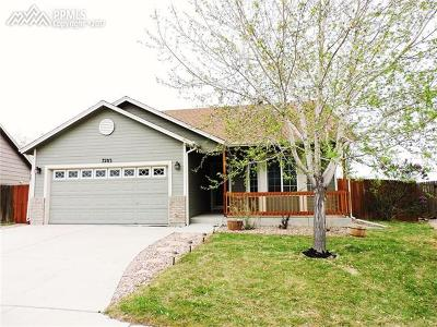 Single Family Home Sold: 7283 Dove Valley Place