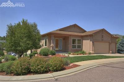 Colorado Springs Single Family Home For Sale: 4987 Marrieta Court