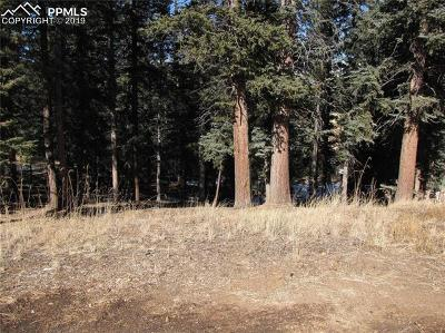 Woodland Park Residential Lots & Land For Sale: 250 Iron Eagle Point