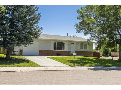 Single Family Home For Sale: 1515 Mineola Street