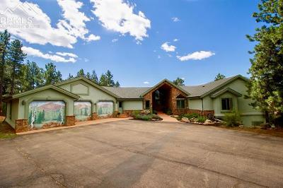 Woodland Park Single Family Home For Sale: 506 Mills Ranch Road