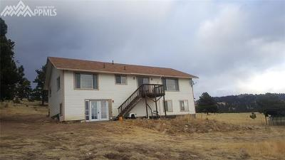 Guffey Single Family Home For Sale: 21 Peak Drive
