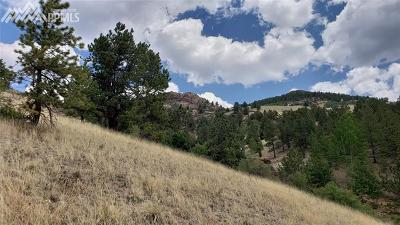 Cripple Creek Residential Lots & Land For Sale: 949 Copper Mountain Drive