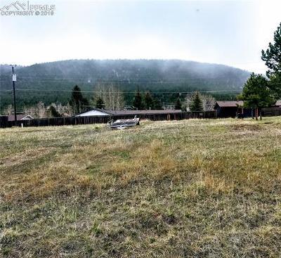 Woodland Park Residential Lots & Land For Sale: 1013 N Baldwin Street