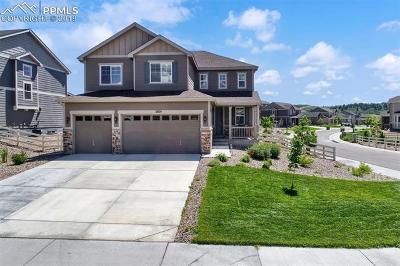 Castle Rock Single Family Home For Sale: 2874 Echo Park Drive