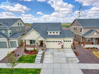 Banning Lewis Ranch Single Family Home For Sale: 7216 Horizon Wood Lane