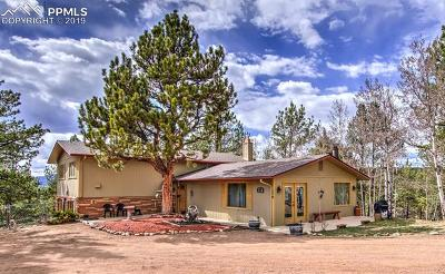 Single Family Home For Sale: 179 Mesa Drive
