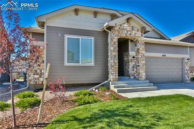 Colorado Springs Single Family Home For Sale: 6749 Black Saddle Drive