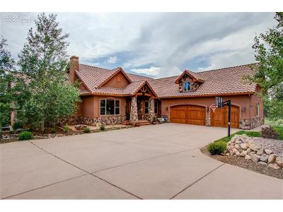 El Paso County Single Family Home For Sale: 17895 Pioneer Crossing Circle