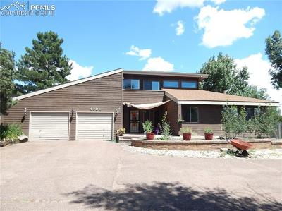 Colorado Springs Single Family Home For Sale: 4985 Park Vista Boulevard
