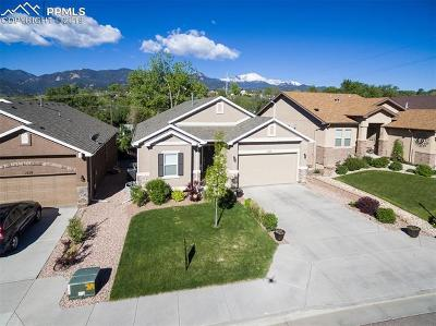 Colorado Springs Single Family Home For Sale: 1278 Ethereal Circle