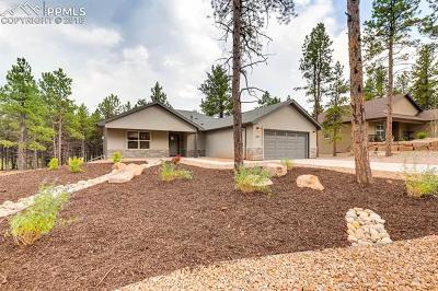 Woodland Park Single Family Home For Sale: 1311 Firestone Drive
