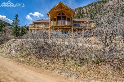 Palmer Lake Single Family Home For Sale: 404 Roosevelt Street